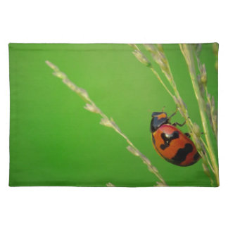 close up photo of ladybird with natural green back placemat
