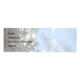 Close up Photo Picture of a Seashell Business Cards