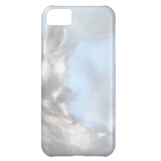 Close up Photo. Picture of a Seashell. Case For iPhone 5C