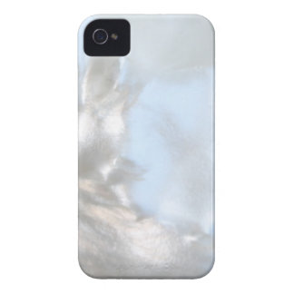 Close up Photo. Picture of a Seashell. Case-Mate iPhone 4 Case