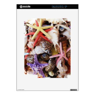 Close Up Picture of Sea Shell ans Starfish Photo Decal For iPad 2