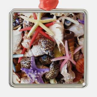 Close Up Picture of Sea Shell ans Starfish Photo Metal Ornament