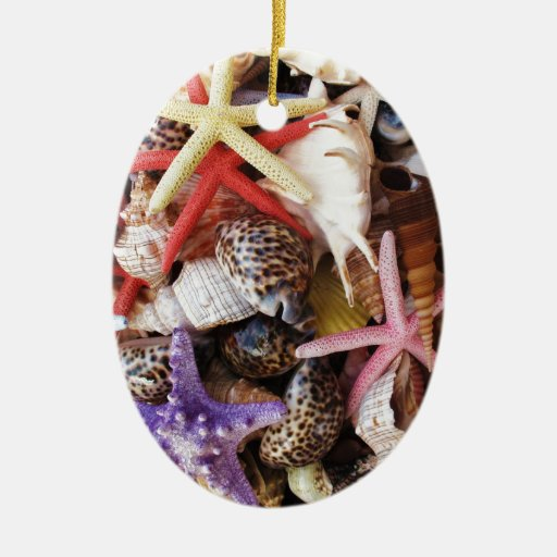 Close Up Picture of Sea Shell ans Starfish Photo Christmas Ornaments