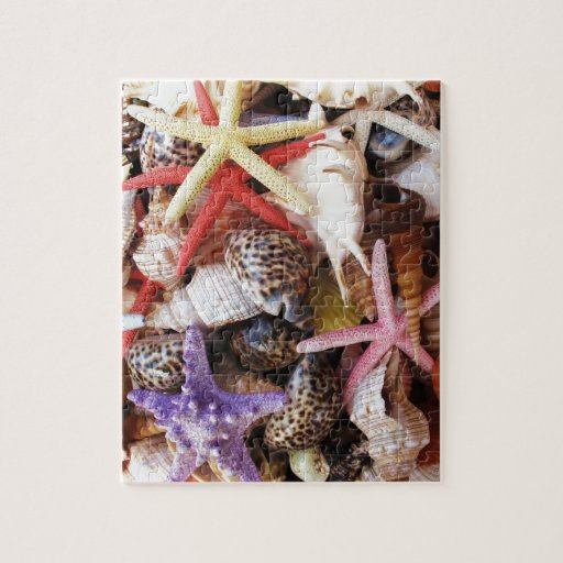 Close Up Picture of Sea Shell ans Starfish Photo Jigsaw Puzzles