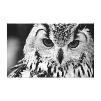 Close Up Portrait Of Eurasian Eagle-owl Gallery Wrap Canvas