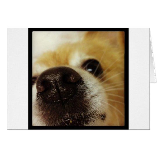 Close up pup! card