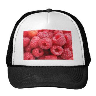 Close Up Raspberry Background Texture Raspberries Mesh Hat
