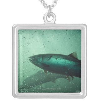 Close up shot of salmon running 2 square pendant necklace