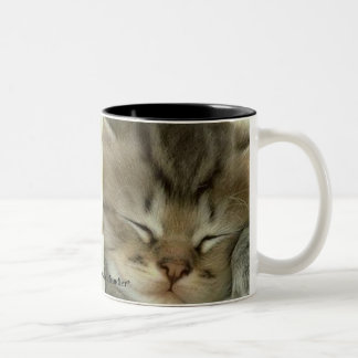 Close-up Sleeping Kitten Mug