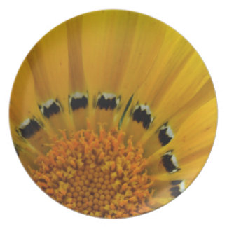 Close-Up Sunflower Plate
