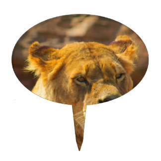 Close_Up_Tiger.jpg Cake Toppers