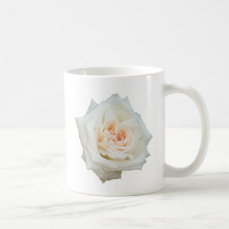 Close Up View Of A Beautiful White Rose Isolated Mugs