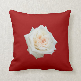 Close Up View Of A Beautiful White Rose Isolated Pillows