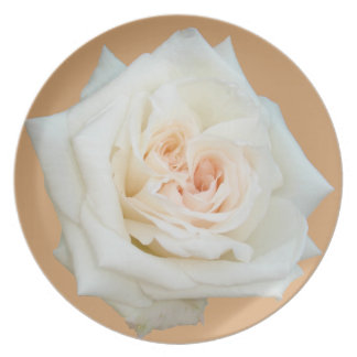 Close Up View Of A Beautiful White Rose Isolated Party Plates