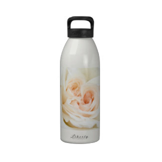 Close Up View Of A Beautiful White Rose Isolated Water Bottle
