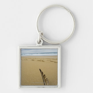 Close-up view of bird feather in beach sand, keychain