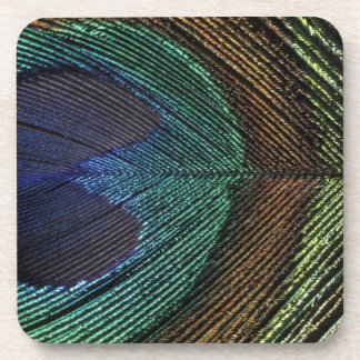 Close up view of eyespot on male peacock feather beverage coasters