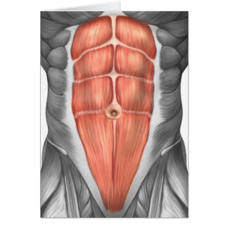 Close-Up View Of Male Abdominal Muscles Card