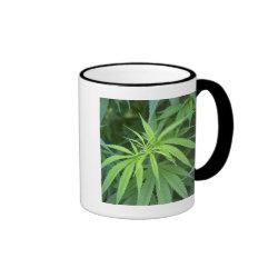 Close-Up View Of Marijuana Plant, Malkerns Ringer Coffee Mug