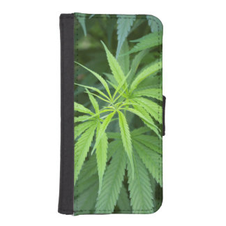 Close-Up View Of Marijuana Plant, Malkerns Wallet Phone Case For iPhone SE/5/5s