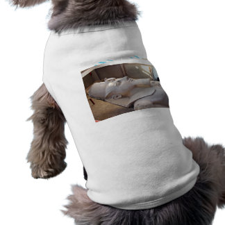 Close up view of Ramses Dog T-shirt