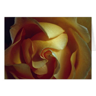 Close-up view of soft yellow rose greeting card