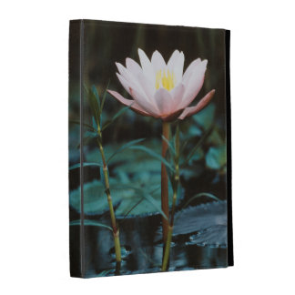 Close-Up view of Water Lily at Inle Lake iPad Case