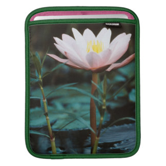 Close-Up view of Water Lily at Inle Lake Sleeves For iPads