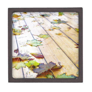 Close up view on a wet green and yellow leaves of keepsake box