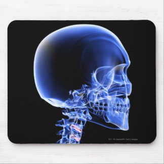 Close up x-ray of the bones in the neck mouse pads