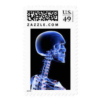 Close up x-ray of the bones in the neck postage stamp