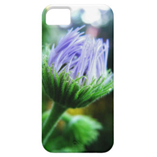 closed iPhone SE/5/5s case