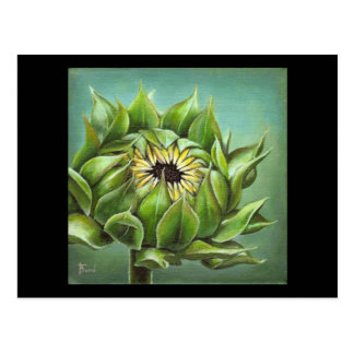 Closed sunflower postcard
