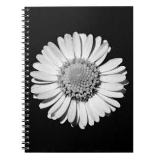 Closed-up black and white daisy notebook