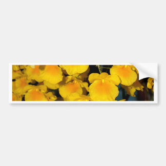 closed up of Orchid Flower Bumper Stickers
