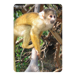Closer View of Yellow Squirrel Monkey 5x7 Paper Invitation Card