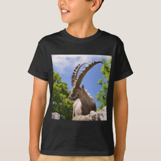 Closeup Alpine ibex T-Shirt