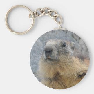 Closeup Alpine marmot Keychain
