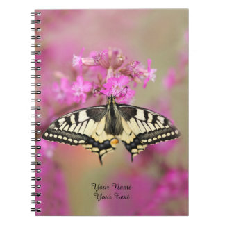 Closeup dovetail butterfly on lilac flower notebook