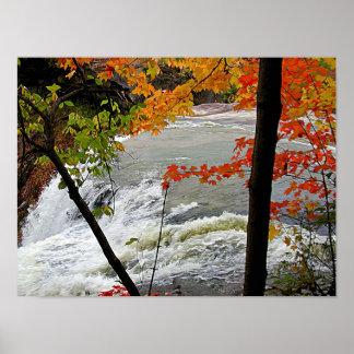 Closeup Falls in Autumn Poster