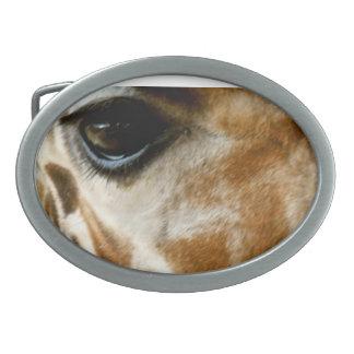 Closeup Giraffe Face Wild Animals Nature Photo Oval Belt Buckles