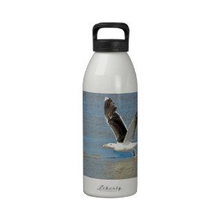 Closeup Great Black-backed Gull in flight Water Bottle