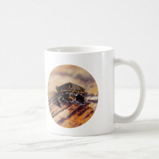 Closeup of a Baby Painted Turtle Coffee Mug