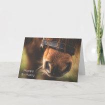 Closeup of a Cute Brown Horse Nose Birthday Card