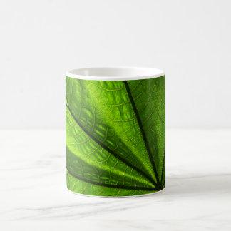Closeup of a leaf coffee mug