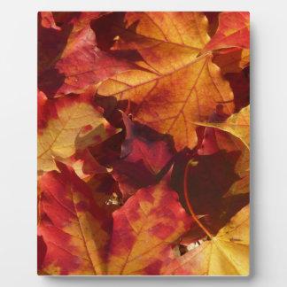 Closeup of Autumn Leaves Plaque