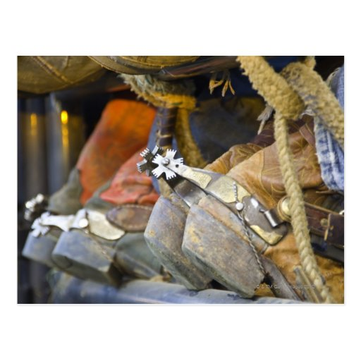 Closeup of Boots & Spurs 2 Postcard