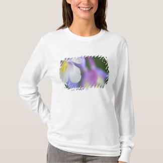 Closeup of Colorado Columbine flower. T-Shirt