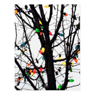 Closeup of colorful Christmas lights on branches Postcard