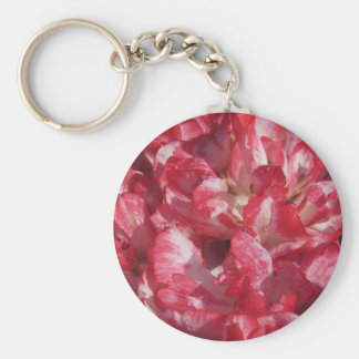Closeup of colorful tulips with droplets in spring keychain